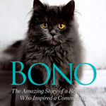 [PDF] [EPUB] Bono: The Amazing Story of a Rescue Cat Who Inspired a Community Download