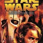 [PDF] [EPUB] Labyrinth of Evil (Star Wars: The Dark Lord Trilogy, #1) Download