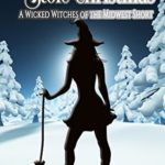 [PDF] [EPUB] How Aunt Tillie Stole Christmas (Wicked Witches of the Midwest Short) Download