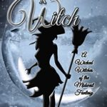 [PDF] [EPUB] Make A Witch (Wicked Witches of the Midwest Fantasy) Download
