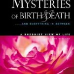 [PDF] [EPUB] Unlocking the Mysteries of Birth Death: . . . And Everything in Between, A Buddhist View Life Download