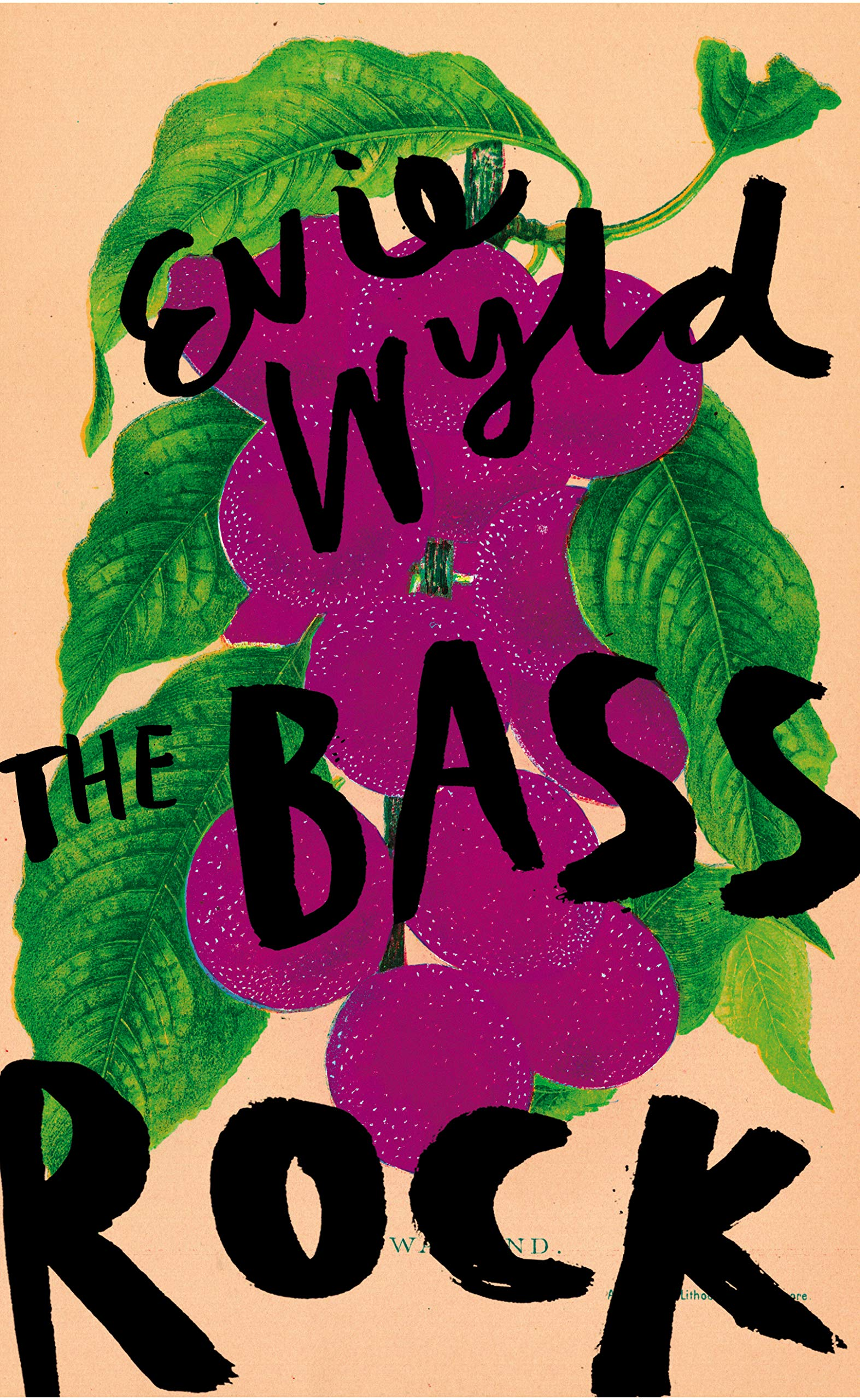 [PDF] [EPUB] The Bass Rock Download by Evie Wyld