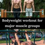 [PDF] [EPUB] Bodyweight workout for major muscle groups Download