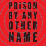 [PDF] [EPUB] Prison by Any Other Name: The Harmful Consequences of Popular Reforms Download