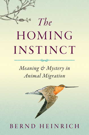 [PDF] [EPUB] The Homing Instinct: Meaning and Mystery in Animal Migration Download by Bernd Heinrich