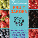 [PDF] [EPUB] Old-Fashioned Fruit Garden: The Best Way to Grow, Preserve, and Bake with Small Fruit Download