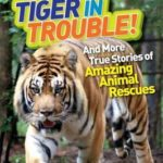 [PDF] [EPUB] Tiger in Trouble!: And More True Stories of Amazing Animal Rescues (National Geographic Kids Chapters) Download