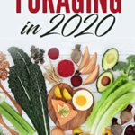 [PDF] [EPUB] Foraging in 2020 The Ultimate Guide to Foraging and Preparing Edible Wild Plants With Over 50 Plant Based Recipes Download
